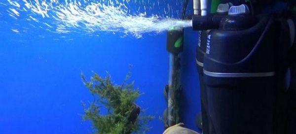 11 Кращих фільтрів для акваріума