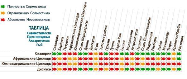 таблиця сумісності цихлид