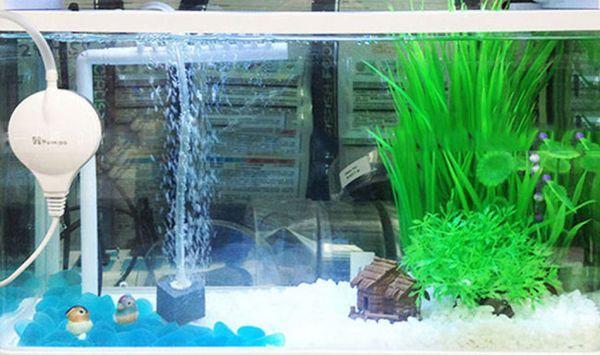 Аерація в акваріумі - основа биофильтрации