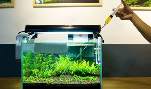 Akvarijní hnojiva pro rostliny