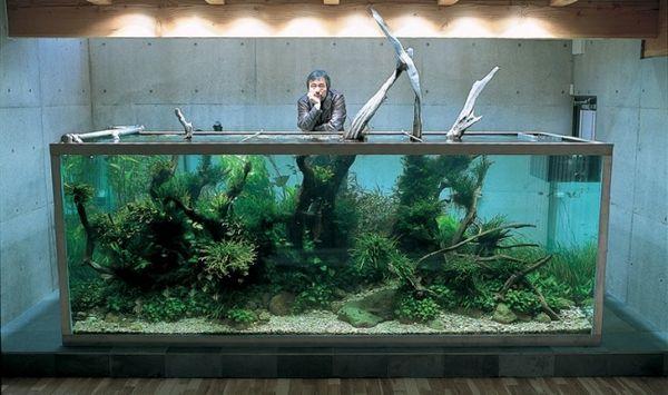 Projektantka Aquascape Amano Takashi.