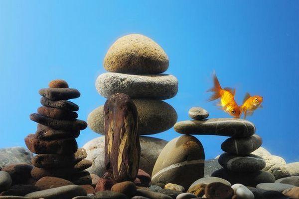 Декоративне каміння в акваріумі