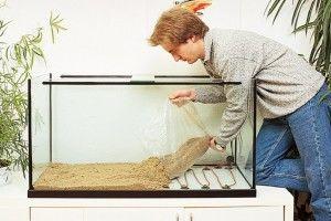 Донний фільтр для акваріума
