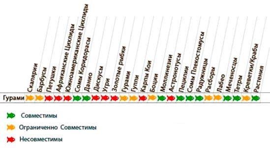 табела компатибилности са гоурамиима