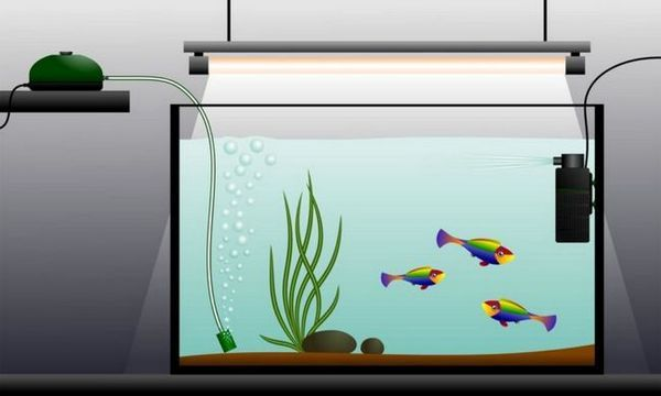 montáž akvária