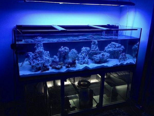 příprava akvária