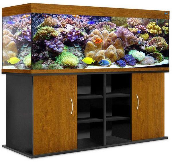 Cum să alegeți dulapul potrivit pentru acvariu