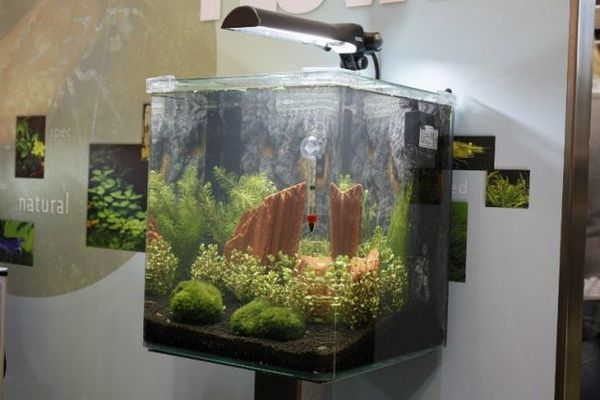 Akvarij nano