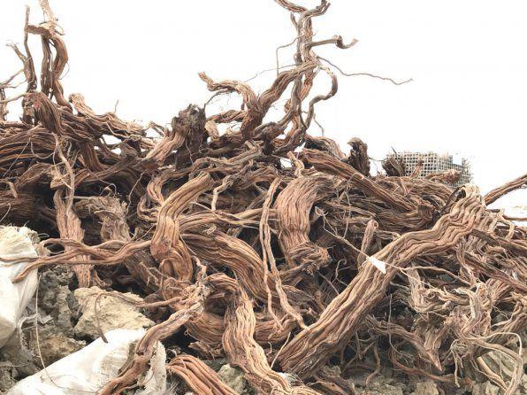 Driftwood vŕtané do akvária