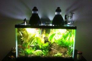Lampa do roślin akwariowych