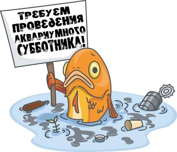 прибирання в акваріумі