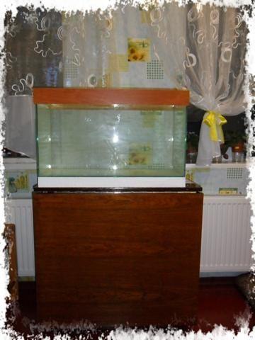 перший акваріум