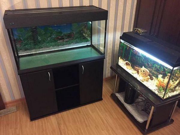 зел аква пара акваріумів