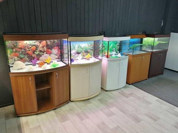 зелаква вибір акваріумів