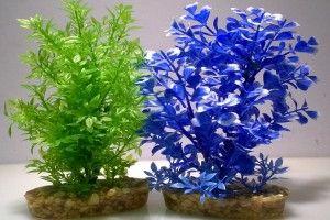 Odżywcza gleba dla roślin akwariowych