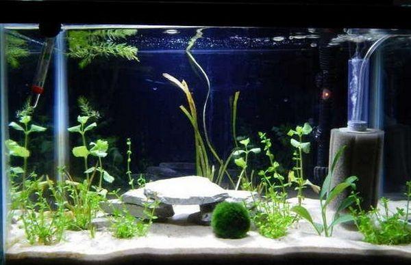 аквариум филтър