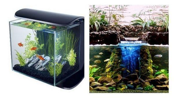 jakie są rodzaje akwariów filtrujących