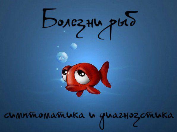 Хвороби риб симптоматика і діагностика фото