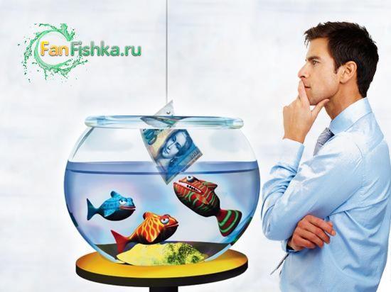 скільки коштує акваріум