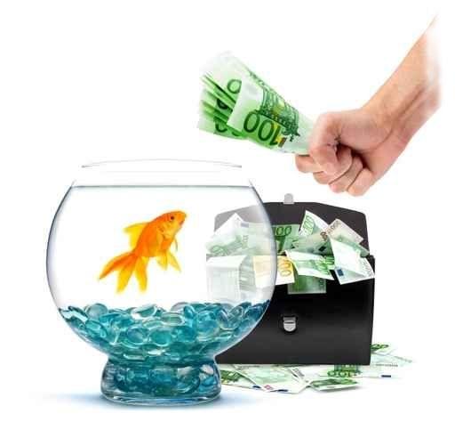 акваріум ціна