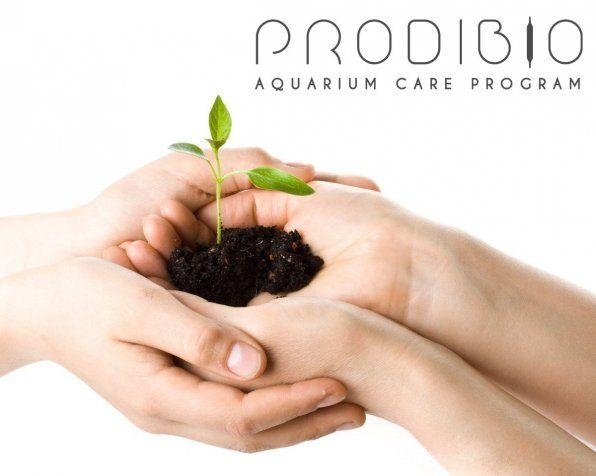 Вічні біостартери, безсмертні добрива та інші добавки для акваріума!