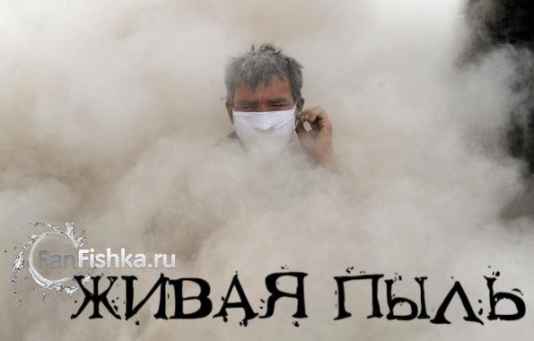 = Živa prašina za pomfrit =